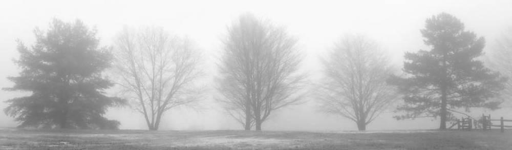 Serenity by Jayne Howard