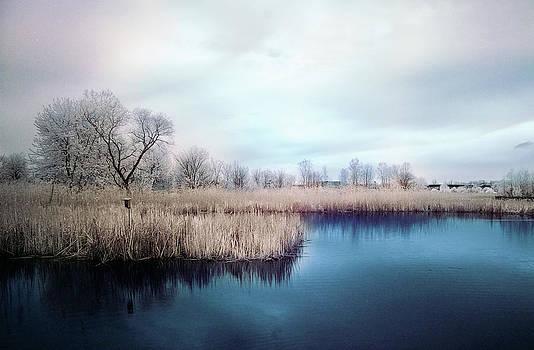 Serenity by Lesa Photography