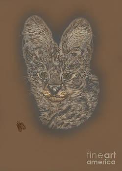 Serval by Helena Marais