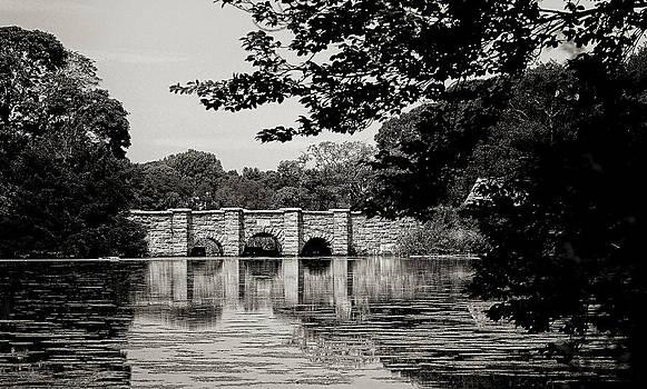 Setauket mill pond by Dick Wood