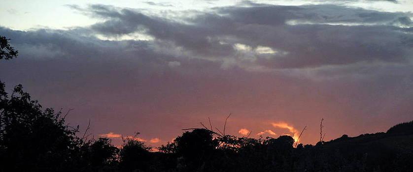 Joseph Doyle - Setting sun