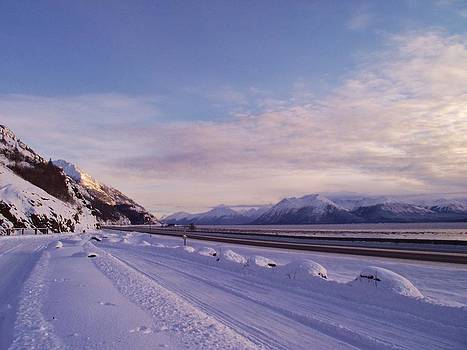 Seward Highway by Megan Sharkey
