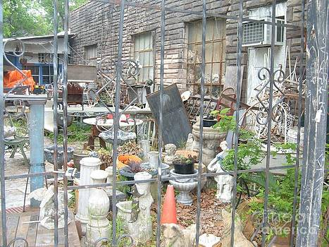 Shabby Chic in Midtown by Tim Youngblood