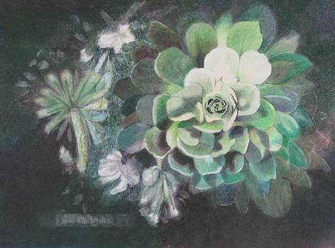 Shades of Green by Vera Rodgers