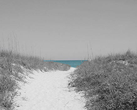 Shades of Sea 2 by Carol Phipps