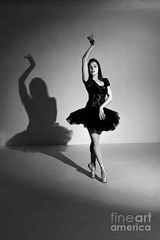 Shadow Dancer by Philip Payne