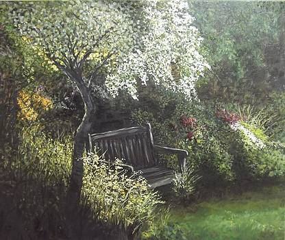 Shady Corner by Lizzy Forrester