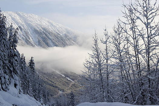 Shames Mountain by Sylvia Hart
