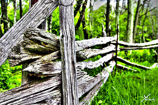 Shannandoa Fence by Shane York