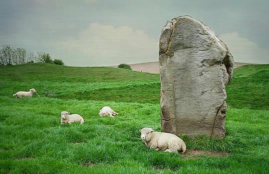Marilyn Wilson - Sheep at Avebury Stones - blue texture