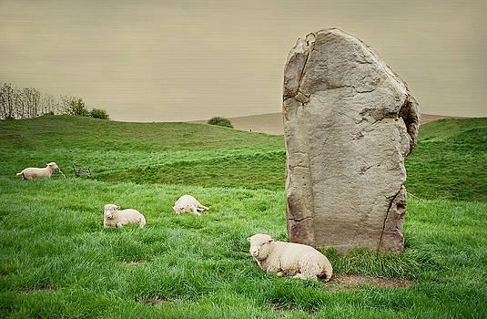Marilyn Wilson - Sheep at Avebury Stones - textured