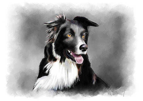 Sheepdog Portrait by Michael Greenaway
