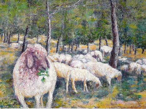 Sheeps at pasture by Baruch Neria-Kandel