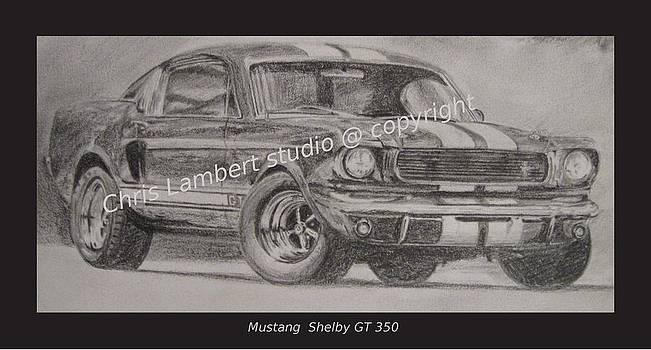 Shelby Gt  by Chris Lambert