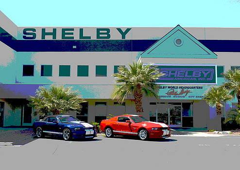 Shelby Showroom Las Vegas by Merridy Jeffery