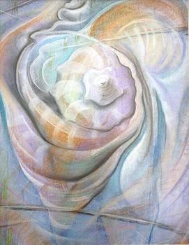 Shells by Jorge Cardenas