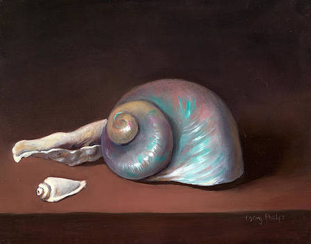 Shells by Mary Phelps