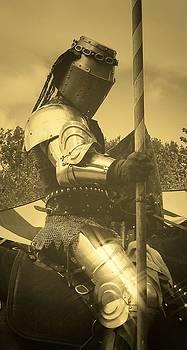 Shining Armor by Leeann Stumpf