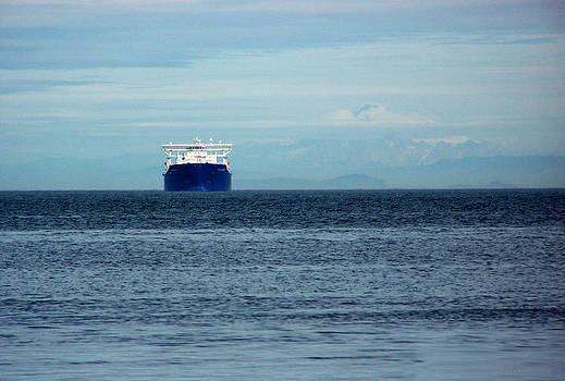 Ship Ahoy by Peri Craig
