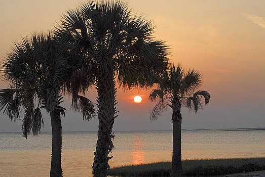 Shired Island Sunset by Claire Pridgeon