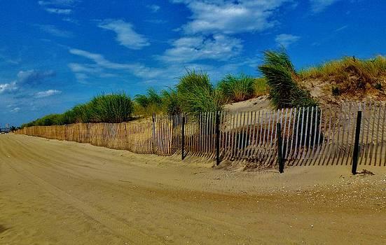 Shore by Jennifer Wartsky