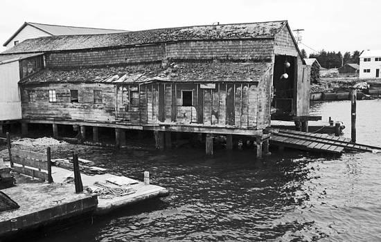 Shoreline Boathouse 1 BW by Seth Shotwell