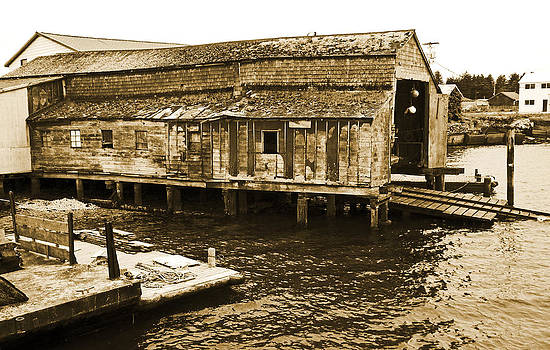 Shoreline Boathouse 1 Sepia by Seth Shotwell