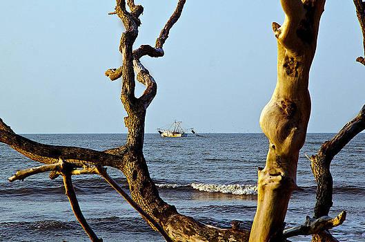 Shrimpboat by Megan Pearson