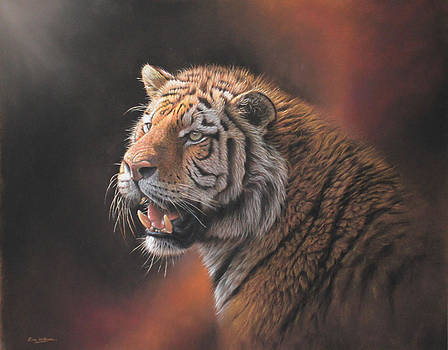 Siberian Tiger by Eric Wilson