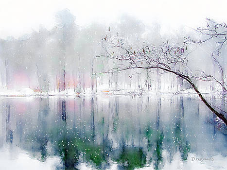 Sibley Pond by Celia Durand