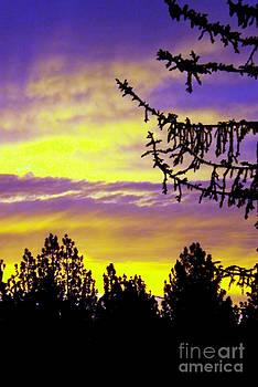 sierra Sunrise by Gary Brandes