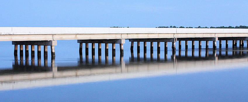 Suzie Banks - Silence in Cedar Key