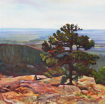 Silent Pine by Marty Smith