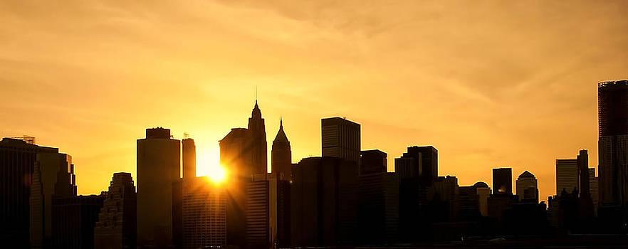 Svetlana Sewell - Silhouetted Manhattan