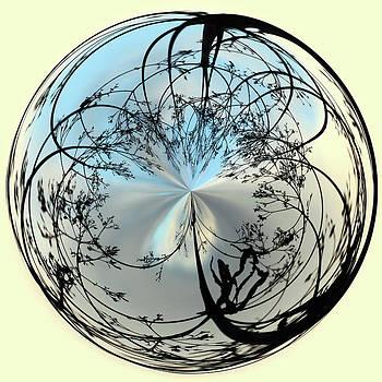 Silhoutte Orb by Sandi Blood