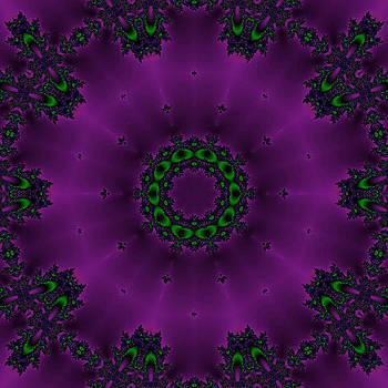 Silky Purple by Karen R Scoville
