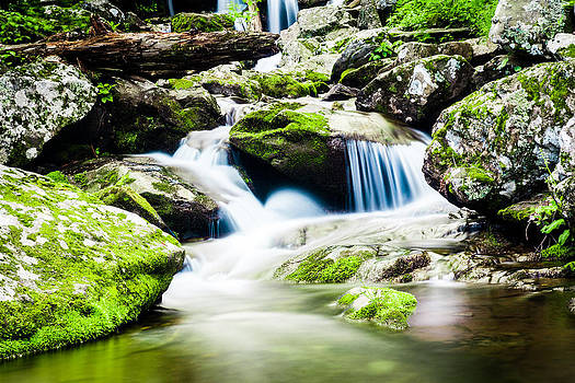 Silky Stream by Shane York