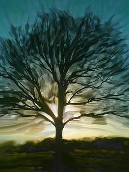 Sillouhette Sunset  by Beth Dennis