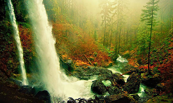 Silver Falls by Amber Schenk