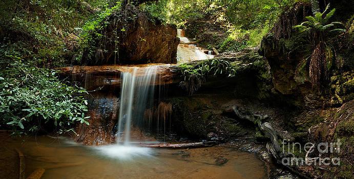 Silver Falls on Berry Creek Trail by Matt Tilghman