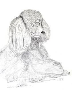 Maria Urso  - Silver Poodle