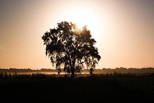 Chris Fullmer - Silver Sun Sky