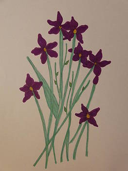Nancy Fillip - Simple Flowers