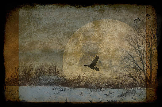 Sister moon by Marie  Gale