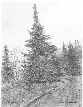 Jim Hubbard - Sitka Spruce