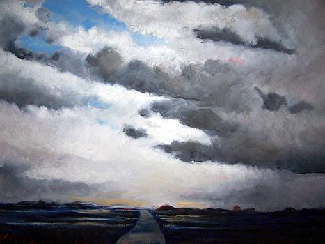 Skagit Storm by Jon Shepodd
