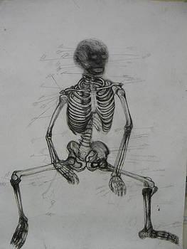 Skeleton by Quinn Johnson