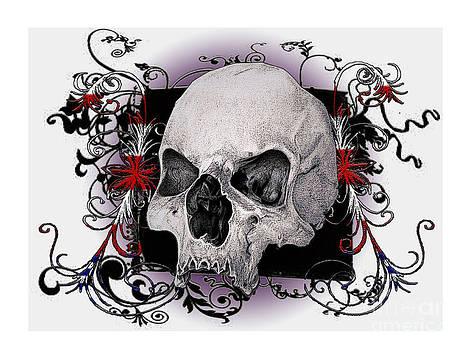 Skull Design by Debbie Engel