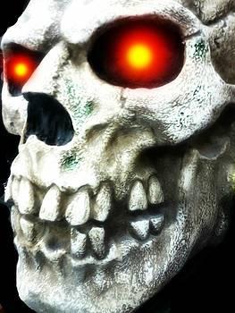 Skull Left by Edward Przydzial