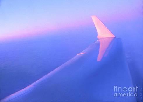 Sky Blue Pink 2 by Lani PVG   Richmond
